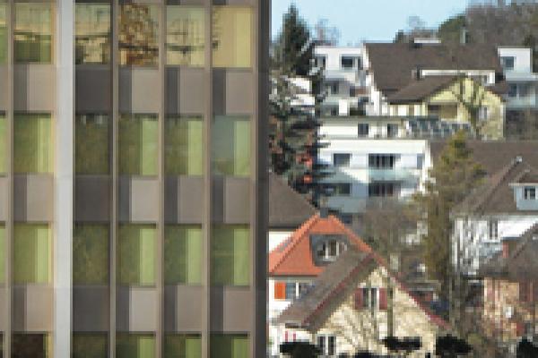 Der Schweizer Immobilienmarkt